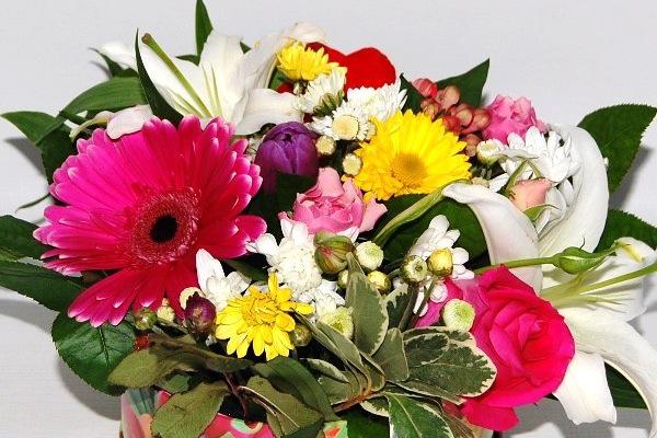 533335 доставка цветов какой подарок сделать на 8 марта учителю